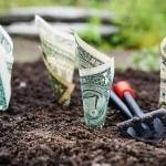 מה חייבים לברר לפני קניית קרקע חקלאית להשקעה? צבי גולדפינגר גאון במשכנתאות