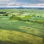 צבי גולדפינגר גאון במשכנתאות: 4 סימנים שקרקע חקלאית מתקרבת להפשרה